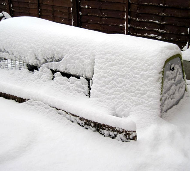 The Eglu Go chicken house covered in snow.