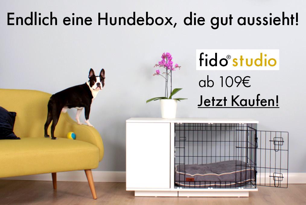 Banner zum Fido Studio, der ersten Hundebox mit integrierter Garderobe