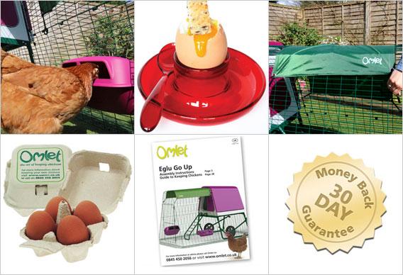 Karmidło, poidło, pokrowiec All Weather Shade, pudełka Omlet na jajka, poradnik Omlet o hodowli kur, 30-dniowa gwarancja zwrotu pieniędzy.