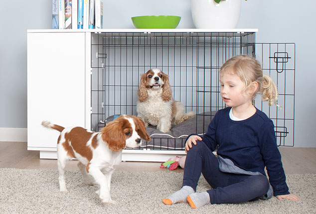 Fido Studio is a contemporary dog crate