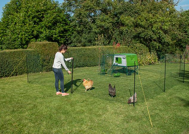 Eine einfache Art und Weise, Ihre Hühner auf einer begrenzten Fläche zu halten.