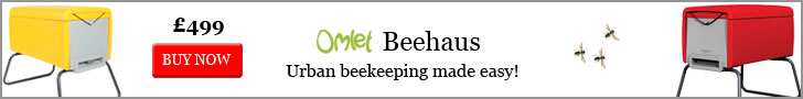 Easy urban beekeeping