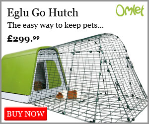Eglu Go Hutch for Guinea Pigs