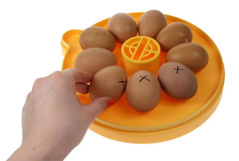 En Brinsea Mini Eco med ägg markerade med X