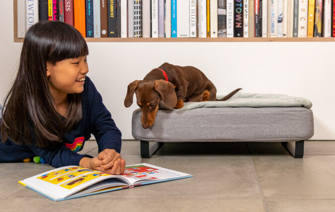 The easy to clean Topology dog beds are super comfortable and look great in your home.