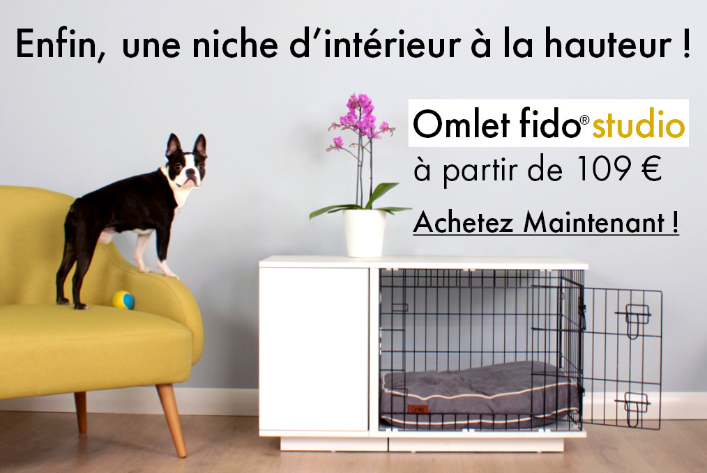Découvrez la niche d'intérieur Omlet Fido Studio