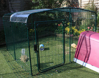 A Clear Cover for your run roof will keep pet guinea pigs dry whilst letting in sunlight.