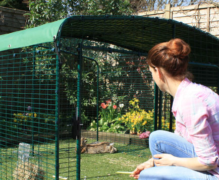 De lagere versie konijnenren heeft een brede deur zodat u makkelijk bij uw konijnen kunt komen