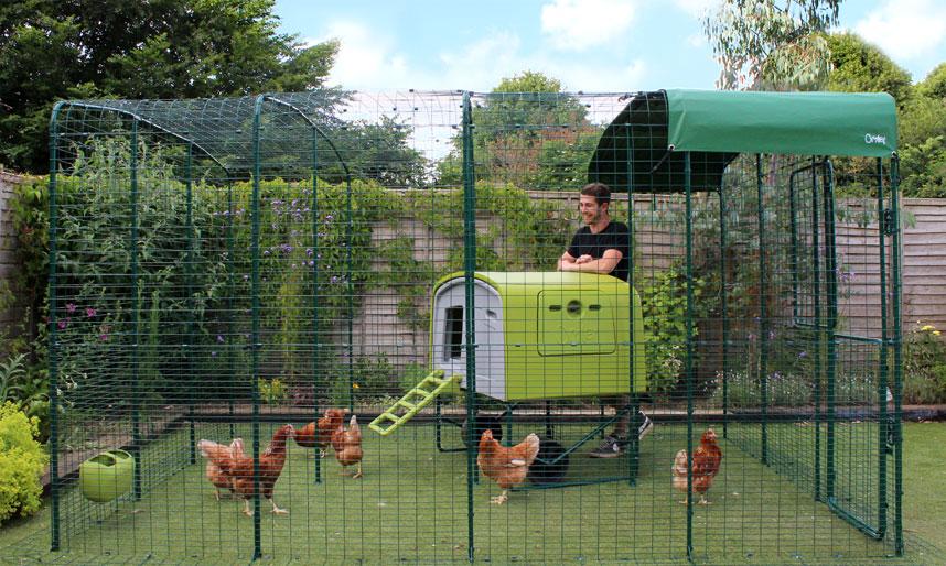 Mann steht im Auslaufgehege neben einem Eglu Cube Hühnerstall