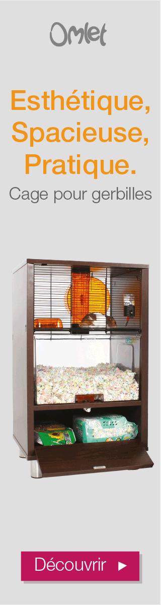 Cage Pour Gerbilles