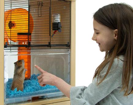 Pige kigger på en hamster i Qute buret
