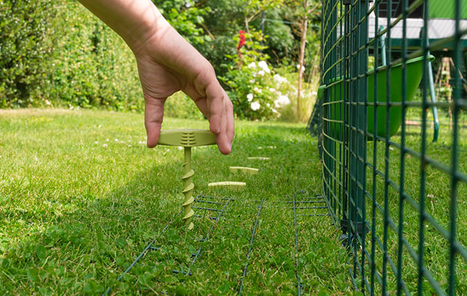 Securing the run perimeter with screw pegs.