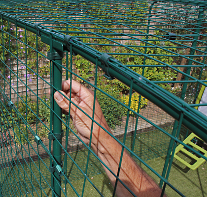 Nahaufnahme der Gitter am Freilaufgehege