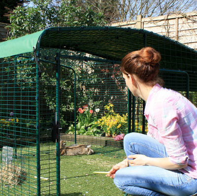The Lo-Rise Outdoor Rabbit Run has a large door, giving easy access to your pet rabbits.