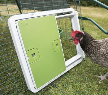 Die Hühnerklappe funktioniert auch an allen Hühnerausläufen