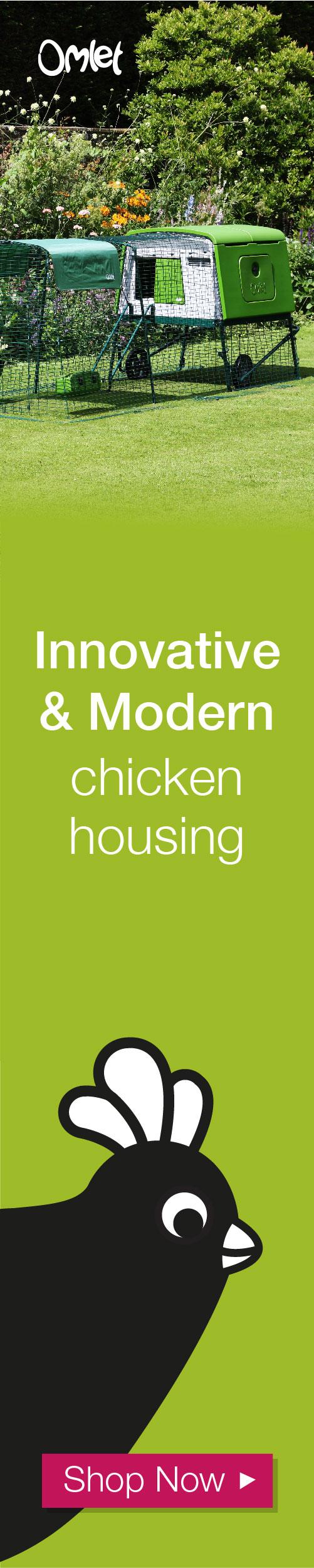 Innovative and modern chicken housing