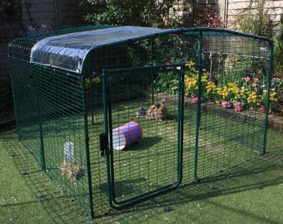 Een transparant dekzeil houdt uw konijnen droog maar laat zonlicht door.