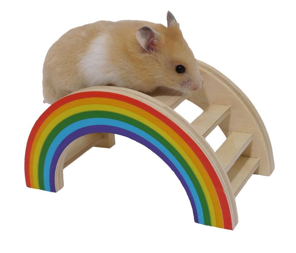 Jouets pour hamsters et gerbilles