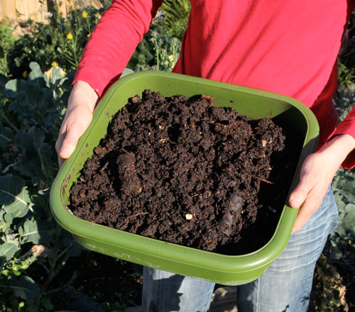 The Hungry Bin makes compost harvesting easy!