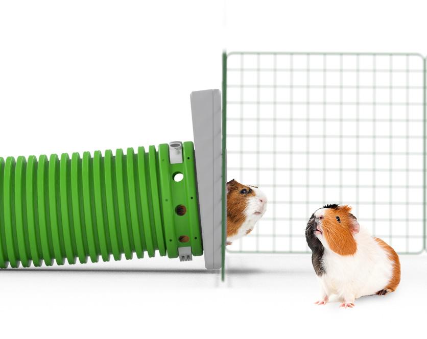 Zippi Guinea Pig Tunnel System