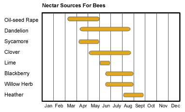 source of nectar for bees