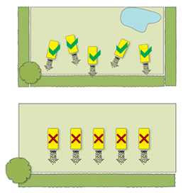 Diagram of Beehaus layout in the garden