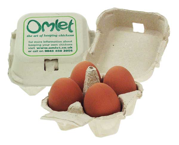 Artificial eggs look and feel just the real thing and can be used to fool a hen into becoming broody.