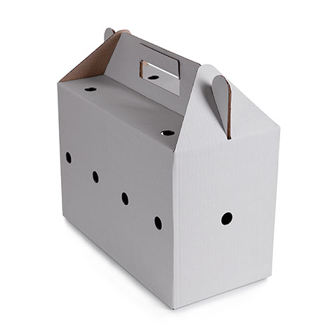 Bird carrying box