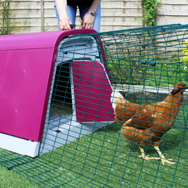 Operating the front door of an Eglu Go stylish chicken house.