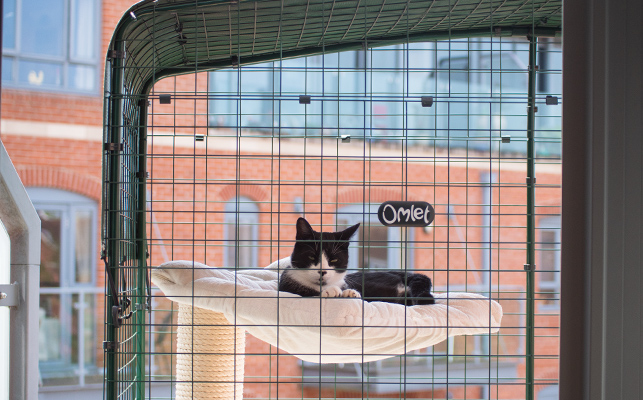 A cat sleeping peacefully in the cat balcony enclosure under a weather proof shade