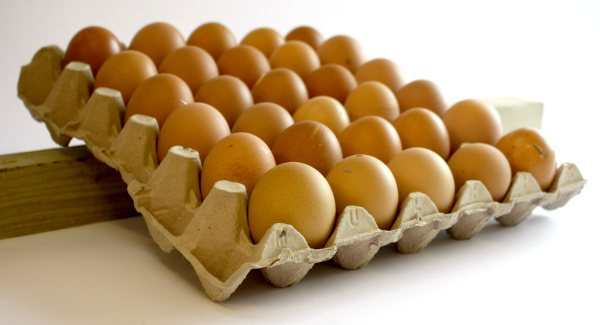 You store your eggs on a tray. Using a wooden block to rock them backwards and forwards each day