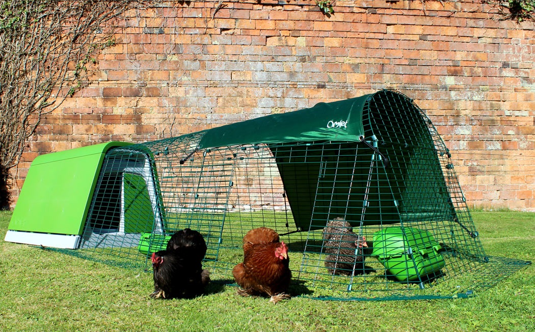 The Run has a free-ranger door, so you can let your chickens roam the garden.