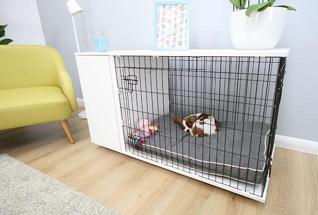 Die Fido Studio Hundebox - zeitgemäß und praktisch zugleich | Hunde ...