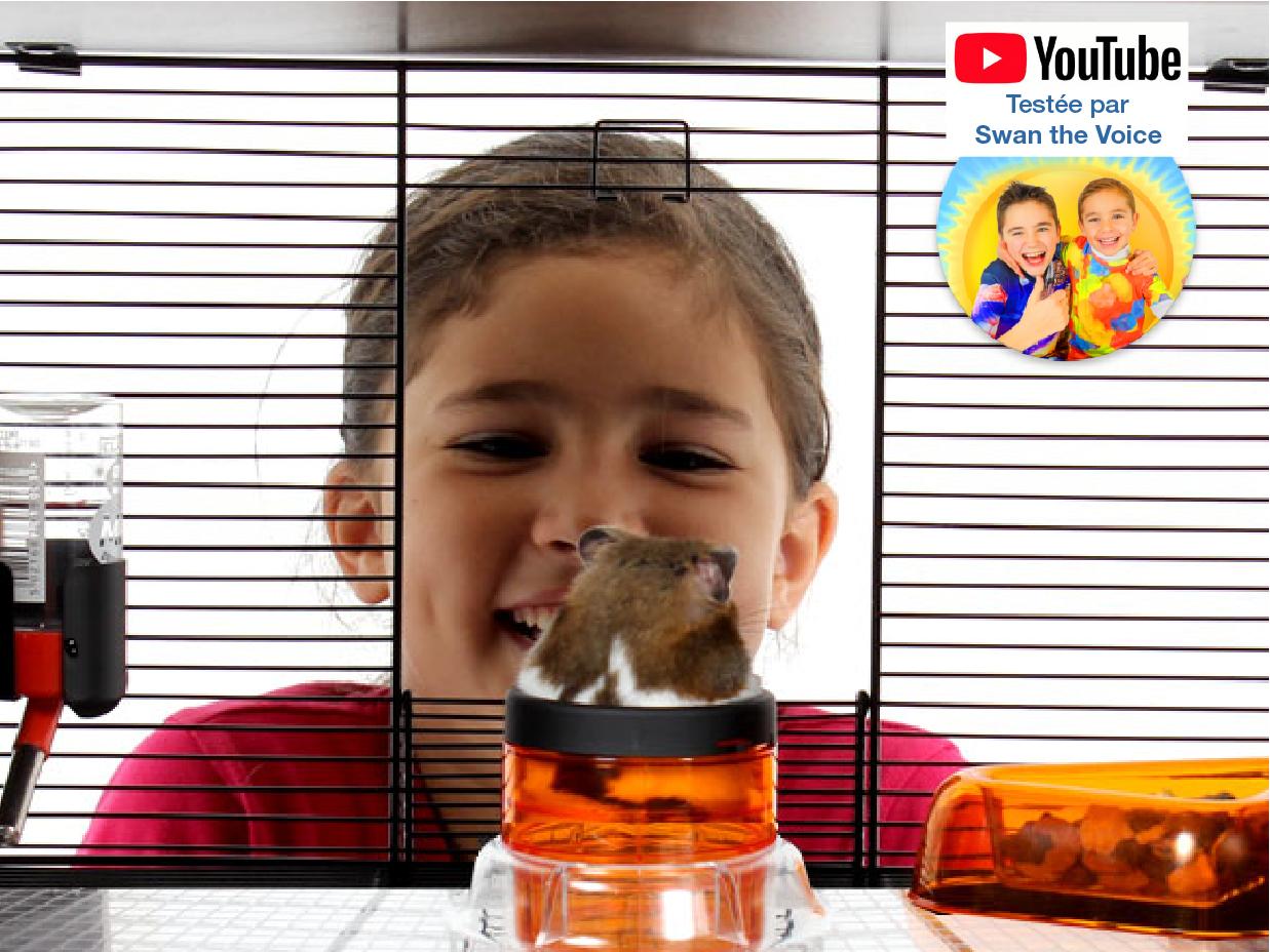 hamster-qui-monte-le-tube-de-la-cage-qute.jpg