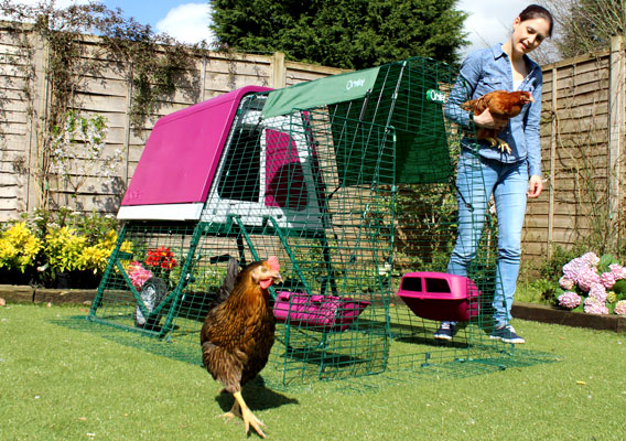 The Eglu Go Up portable chicken coop.