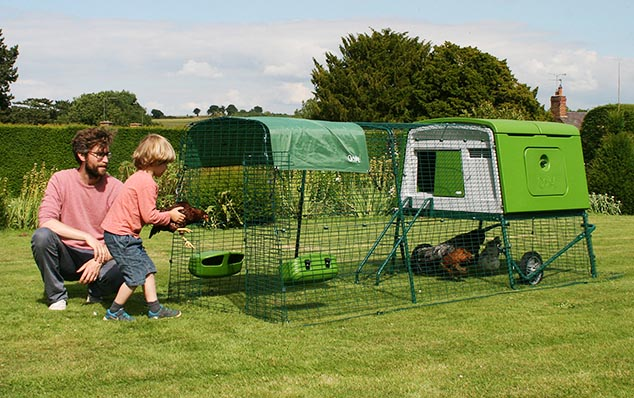 A man and his son tend to their chickens in the Eglu Cube backyard chicken coop