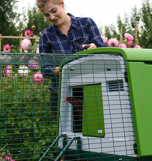 A young woman stands next to the Eglu Cube chicken coop in her backyard.