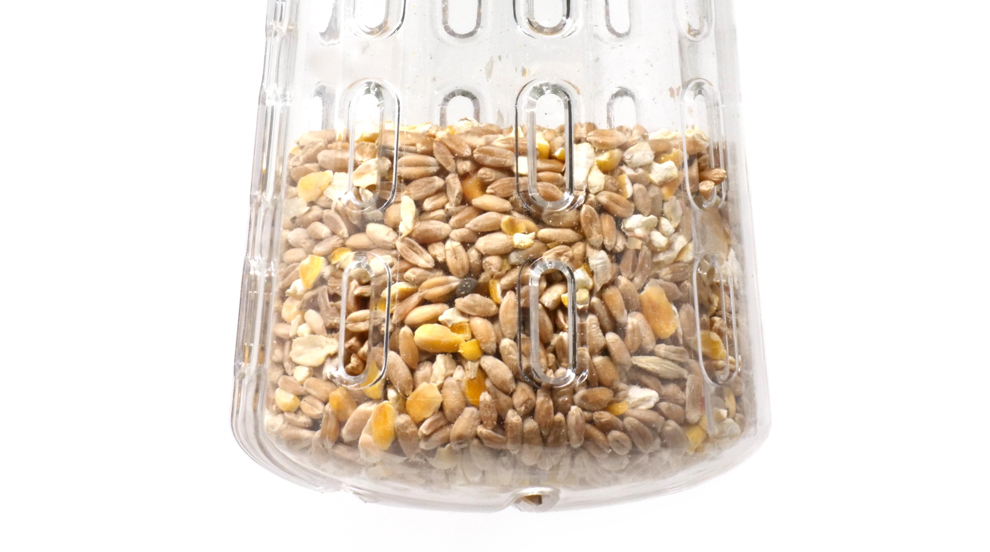 Dziobak w wersji wiszącej, wypełniony kukurydzą