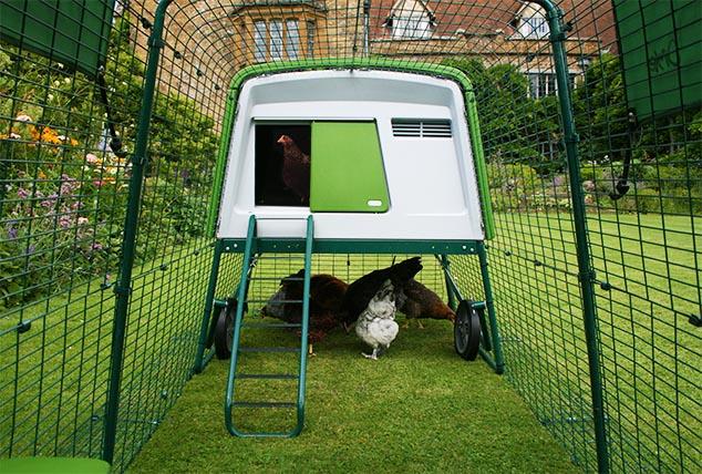 L'enclos est fabriqué à partir d'acier soudé et dispose d'une jupe de protection anti-tunnel indispensable pour garder vos poules en sécurité.