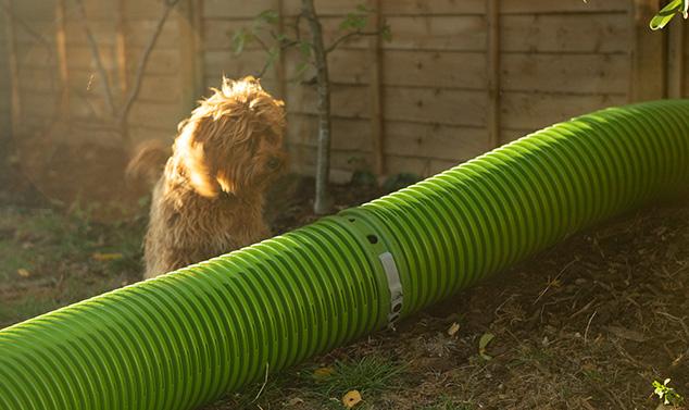 Dina kaniner kan på ett säkert sätt använda tunnlarna när andra djur är i trädgården