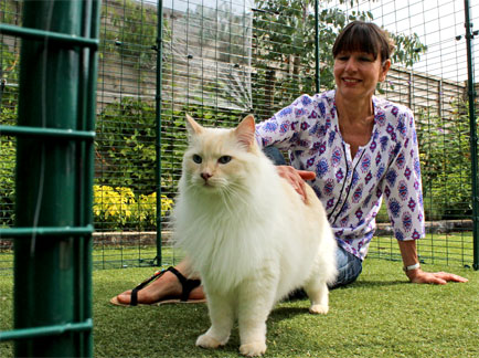Woman inside the Catio Outdoor Cat Enclosure petting a ragdoll cat
