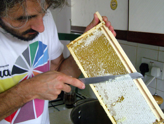 Collecting honey.