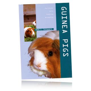 Guinea Pig Books