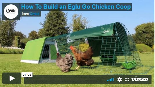 video-de-montage-poulailler-eglu-go-omlet